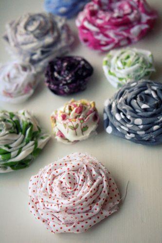Flower new roses