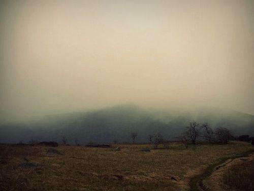Eh fog 2