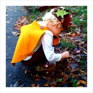 Thea picking leaves