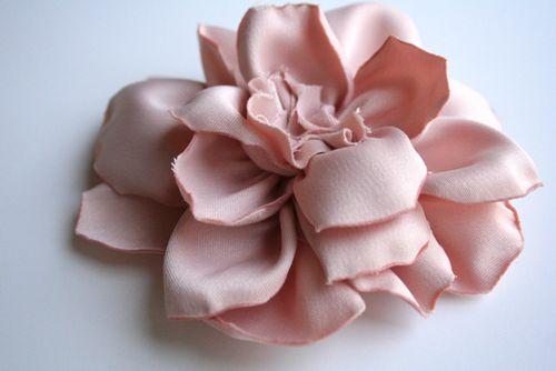 Open rose 2