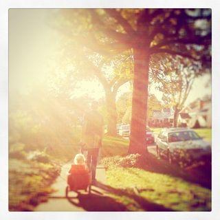 Walk sunlight 1